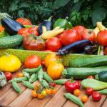 سبزیجات-در-بارداری