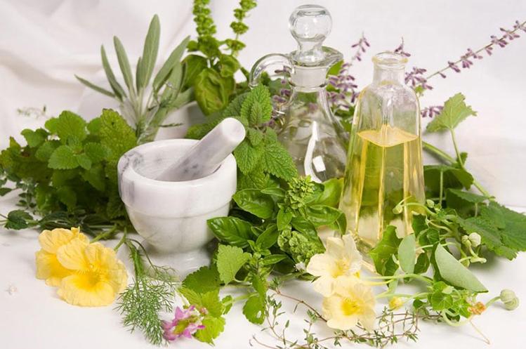 مصرف گیاهان دارویی دربارداری و خطر سقط جنین